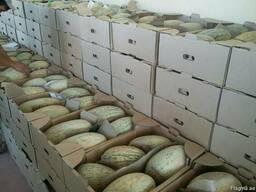 Фрукты и овощи Узбекистана - фото 8