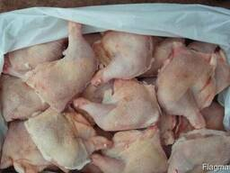 Курица Броилер курица несушки - фото 6