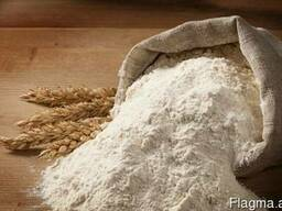 Sell Wheat flour first grade/class