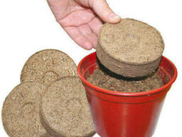 Peat moss for growing seedlings