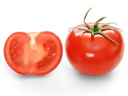 Fresh Tomatoes, Type El Bandito from Turkmenistan