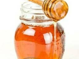 Мед алтайский натуральный