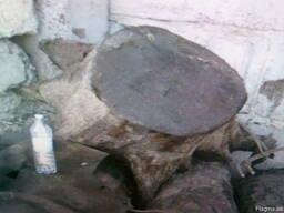 Мореный дуб экспорт - фото 2