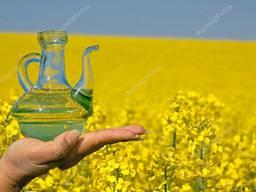 Оптом рапсовое масло