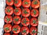 Овощи и Фрукты. Сухо-фрукты - photo 1