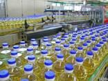 Подсолнечное масло на экспорт - фото 1