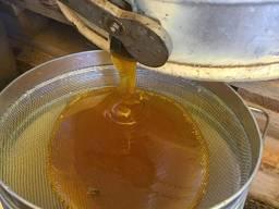 Sell natural honey