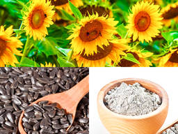Sunflower Meal High Protein 36% (as is) Non Pelleted, Sunflower Oil Cake, For Animal Feed