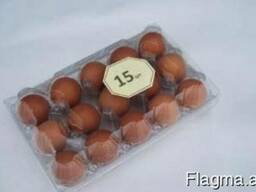 Tray for chicken eggs from PET transparent packaging - photo 7
