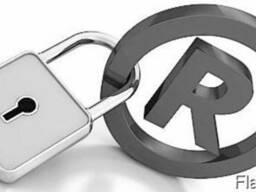 Защита Интеллектуальной Собственности, Регистрация бизнеса